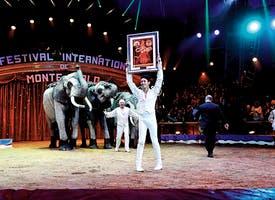 Reisebild: Rundreise Cote d'Azur mit Zirkusfestival in Monaco
