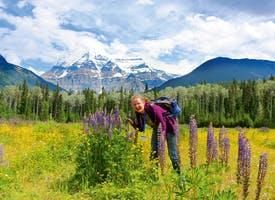 Reisebild: Wandern im Westen Kanadas mit Eigenanreise