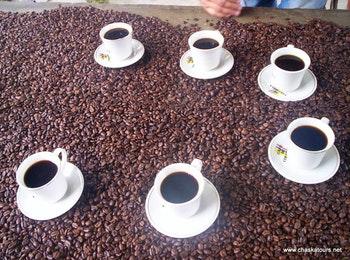 Kolumbianischer Kaffee - ©Chaska Tours