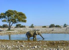 Reisebild: Rundreise Namibia - Die Erlebnistour mit Lüderitz