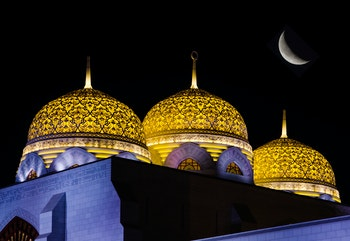 Große Moschee in Muscat - ©Rex Wholster - Fotolia