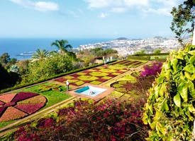 Reisebild: Rundreise Madeira - mit mehr Bewegung und Naturerlebnissen