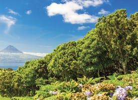Reisebild: Rundreise Azoren - Inselhüpfen im Atlantik