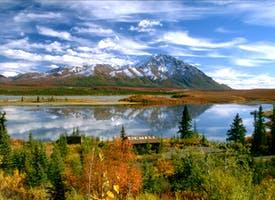 Reisebild: Kreuzfahrt West-Kanada & Rundreise in Alaska