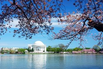 Jefferson Memorial in Washington D.C. - ©rabbit75_fot - Fotolia