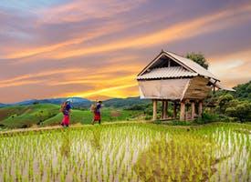 Reisebild: Rundreise Vietnam - Kultur, Natur und Wandern