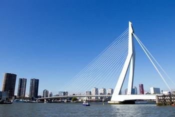 Erasmusbrücke Rotterdam - ©VanderWolf Images - AdobeStock