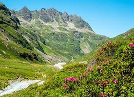 Reisebild: Wanderreise Tiroler Paznauntal - Österreich