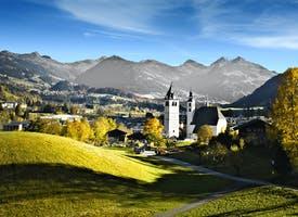 Reisebild: Rundreise Kitzbüheler Alpen - Almabtrieb