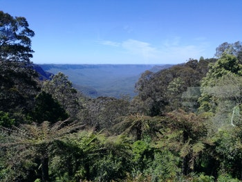 Blue Mountains - ©Juliane Voigt - Eberhardt TRAVEL