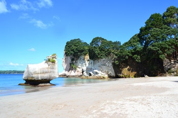 Coromandel-Halbinsel - Wanderung zur Cathedral Cove - ©Andreas Wolfsteller