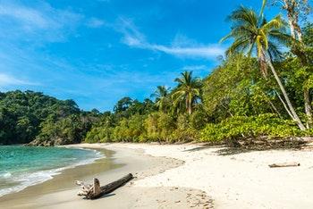 Manuel Antonio-Nationalpark, Costa Rica - ©Simon Dannhauer - Adobe Stock