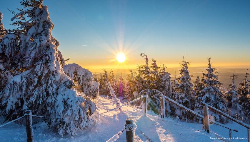 Weihnachten Busreisen 2019.Weihnachten Im Vogtland Saison 2019 Busreise De Wwpla