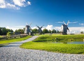 Reisebild: Single-Aktivreise in Estland