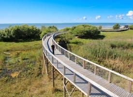 Reisebild: Aktivreise in Estland - Wandern, Rad- & Kanutour