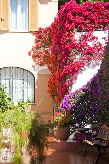 Casa di Meglio, Copyright: Andrea di Meglio