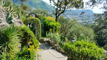 Botanischer Garten la Mortella - ©Eberhardt TRAVEL