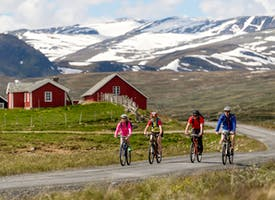 Reisebild: E-Bike-Radreise in Norwegen