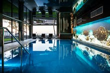 Schwimmbad Hotel Max, Copyright: Hotel Max