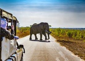 Reisebild: Singlereise Südafrika - Weihnachten & Silvester