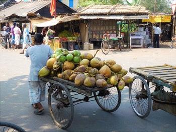 Sansibar - Kokosnussverkäufer - ©Copyright Michael Krause Eberhardt - TRAVEL
