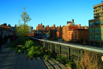 New York - Auf der High Line - ©Denise Hartmann