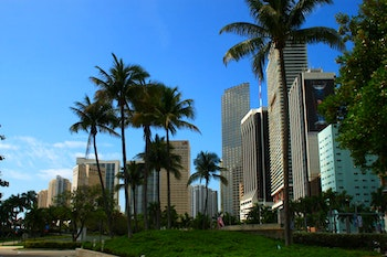 Downtown Miami - ©Denise Hartmann