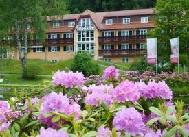 Reisebild: Kur & Wellness in Deutschland - Parkhotel Bad Brambach