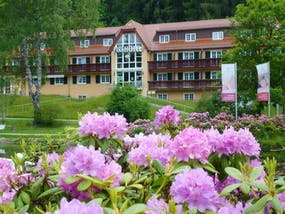 Parkhotel Bad Brambach, Copyright: Parkhotel Bad Brambach