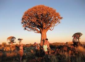 Reisebild: Singlereise Namibias Höhepunkte - Kalahari, Etosha, Namib