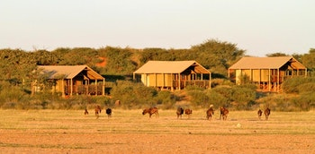 Suricate Tented Camp