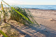 Ostsee - Strand, Copyright: Eberhardt TRAVEL / ideaspa.eu