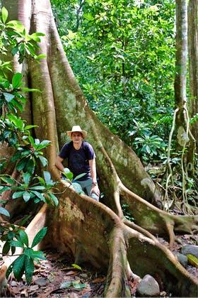 Carara-Nationalpark, Costa Rica