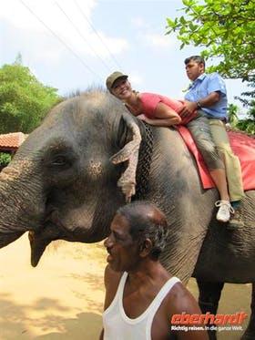 Sri Lanka: Einfach nur tierlieb - was sonst?