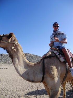 Kamelreiten in Ägypten