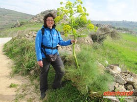 2012: Wandern auf der Akamashalbinsel (Zypern)