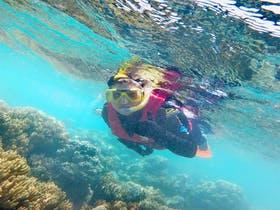 Beim Schnorcheln am Great Barrier Reef