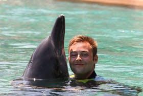 Delphin-Schwimmen in Dubai