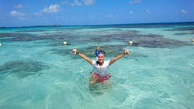 Schwimmen mit Mantas auf Antigua